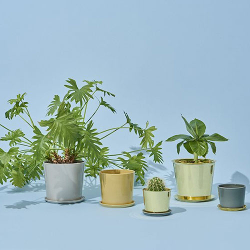 HAY Botanical Pot M Brass