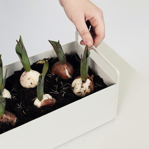 Plant box small light grey