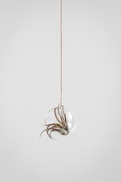 Studio About Bubble Hanging Vase M Transparant